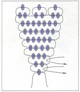 Василек из бисера - схема
