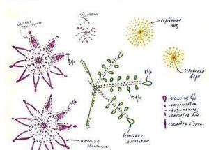 cvety-kruchkom-4