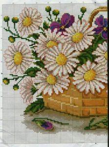 Polevye-cvety-11a