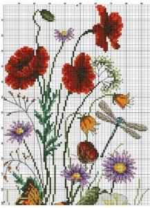 Polevye-cvety-15