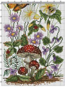 Polevye-cvety-15b