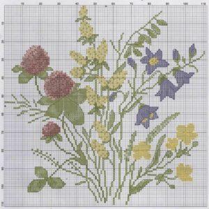 Polevye-cvety-5