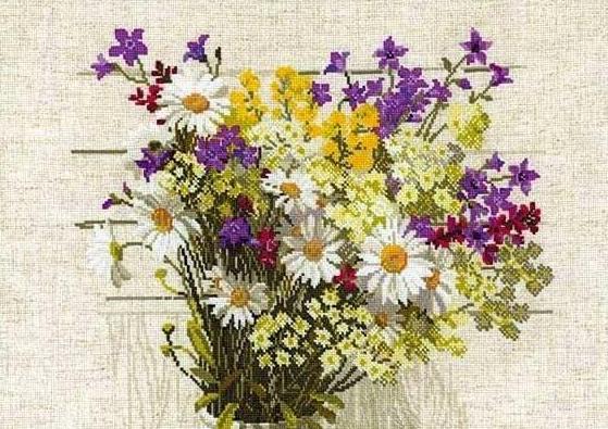 Polevye-cvety