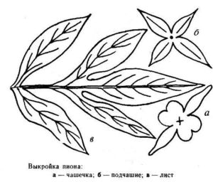 Vykroyka-pion-2