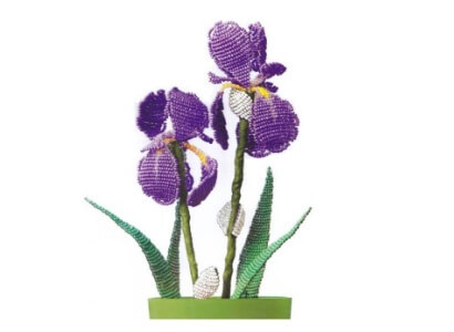 iris-sxema-biserom-01