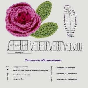 rozy-kruchkom-6